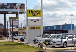 Wildart Tues Hertz 7804.JPG