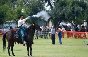 Horse Cavalry