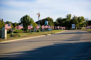 Nolanville subdivision honors veterans by displaying American flags