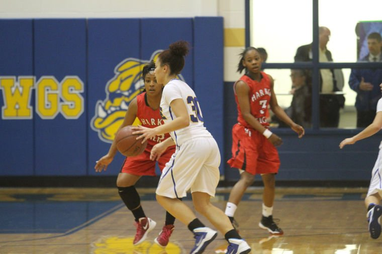 GBB Cove v Heights 72.jpg