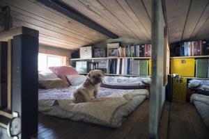 LIFE HOME-TINY-HOUSE 11 MS