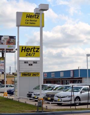 Wildart Tues Hertz 7807.jpg