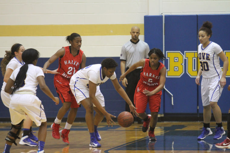 GBB Cove v Heights 59.jpg