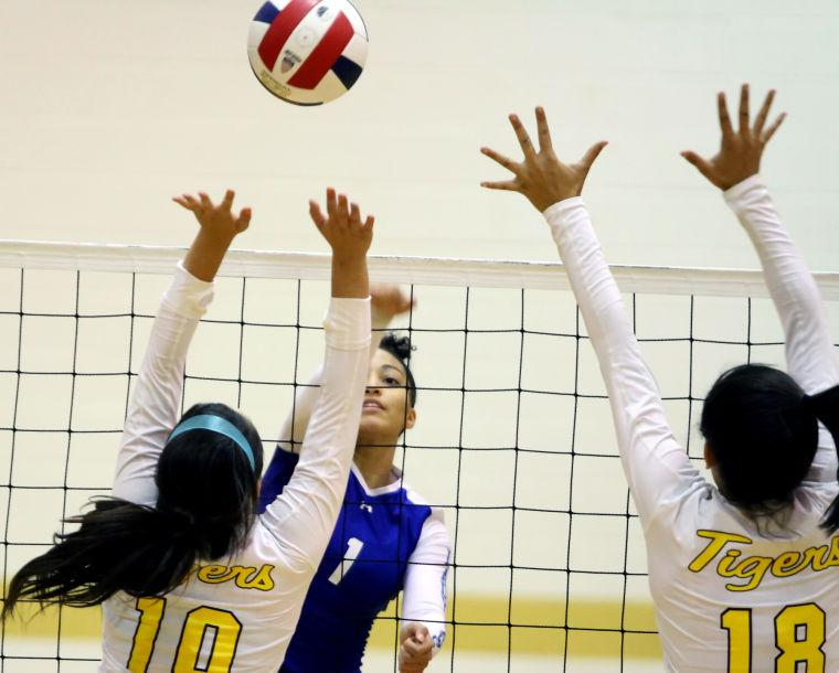 Cove VB sweeps Stony Point