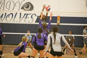 <p>Shoemaker's Briana McCutcheon (11) goes up for a block against Florence on Tuesday.</p>