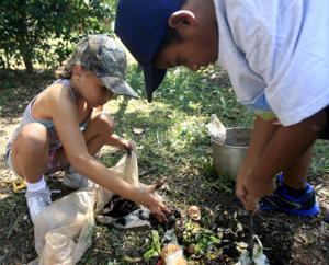 Youth Gardening