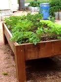 Raised-bed gardening