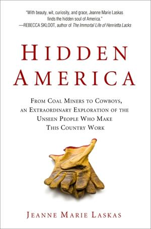 'Hidden America'