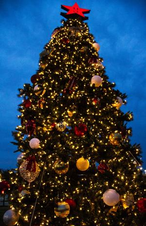 HH Chamber of Commerce Tree Lighting