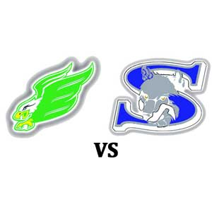 Pound Picks - Ellison vs Shoemaker - Week 10