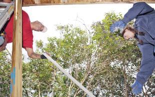 Volunteers still needed for Habitat projects
