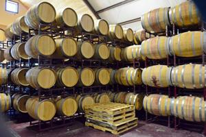 Travel: Becker Vineyards