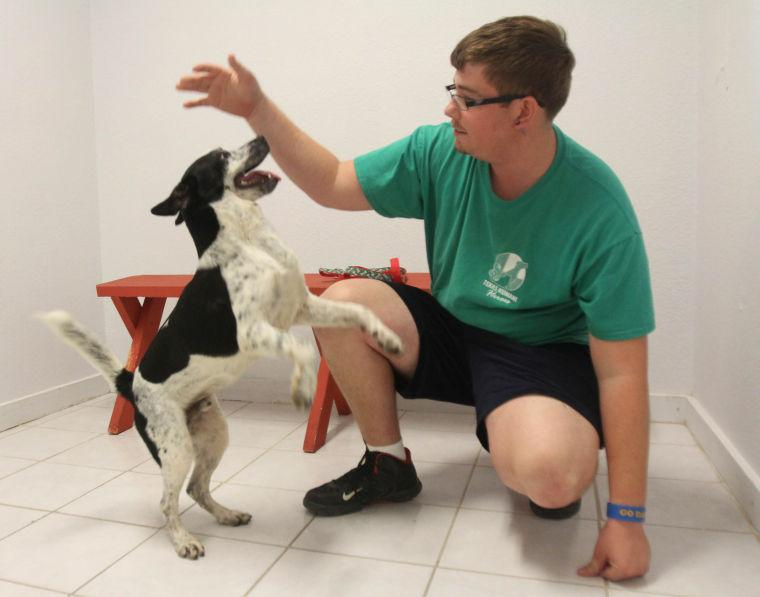 Texas Humane Heroes Adoption Center