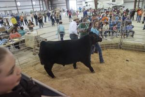 Killeen Junior LivestockShow_001