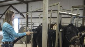 Killeen Junior LivestockShow_002