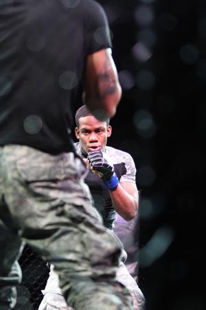 Fight Fan