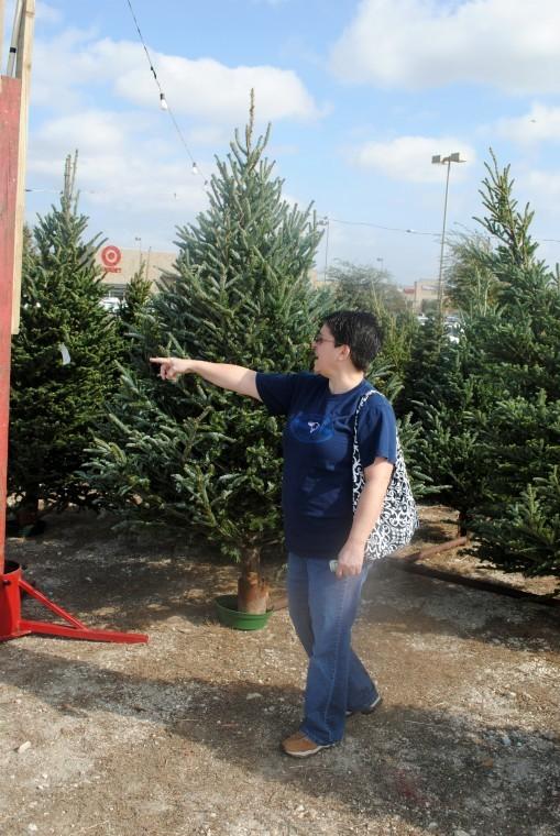 Warner's Christmas tree lot