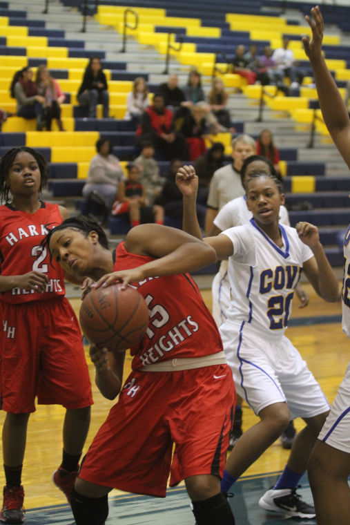 GBB Cove v Heights 33.jpg