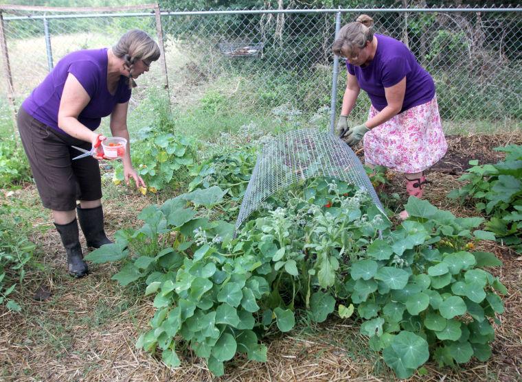 Herb gardeners