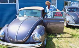 Bug Acres