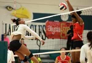 Ellison v HH volleyball