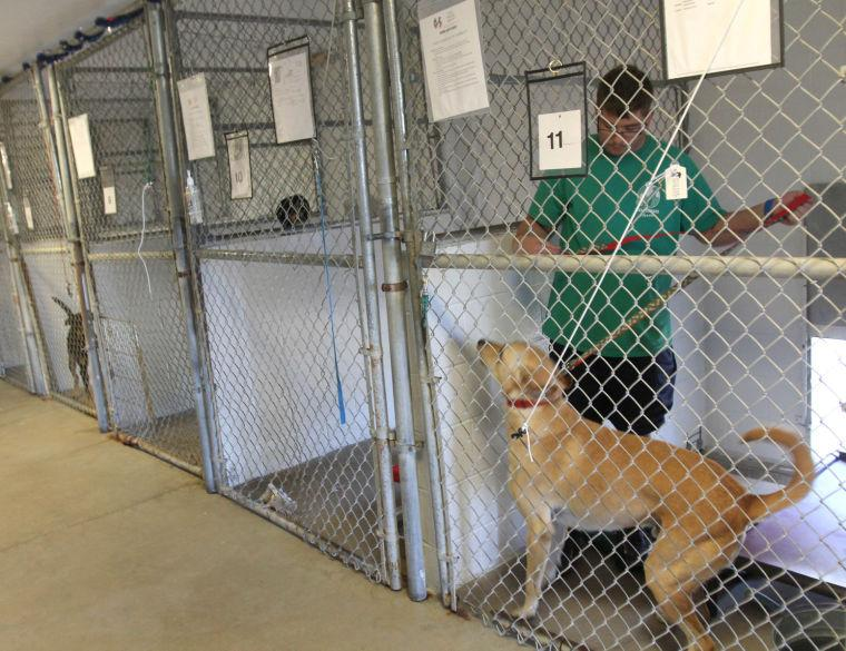 Texas Humane Heroes Adoption Center
