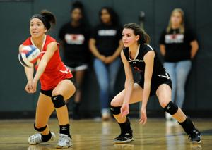 Ellison v HH volleyball