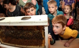 Kids Learning About Bees