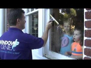 Window Genie Home Services
