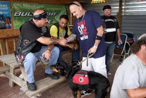 Train A Dog, Save A Warrior