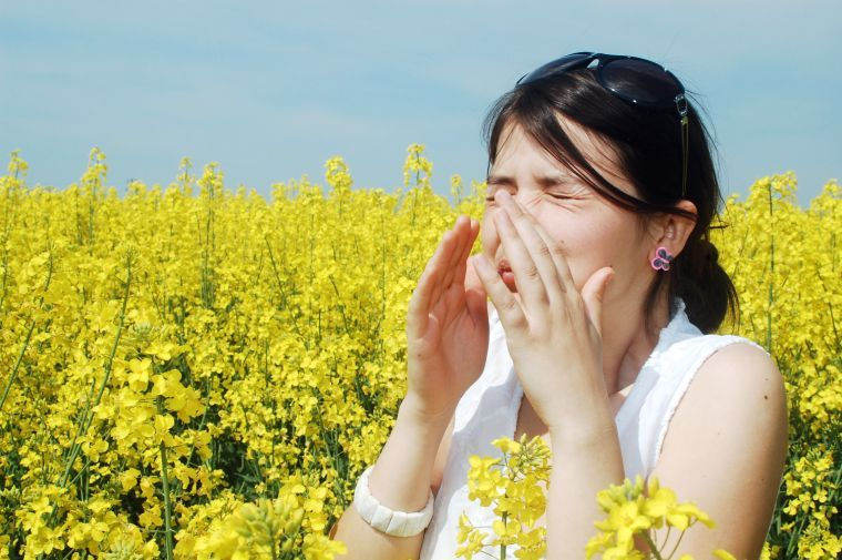 Sneeze season