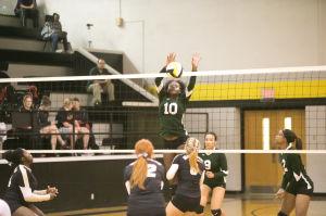 Ellison volleyball
