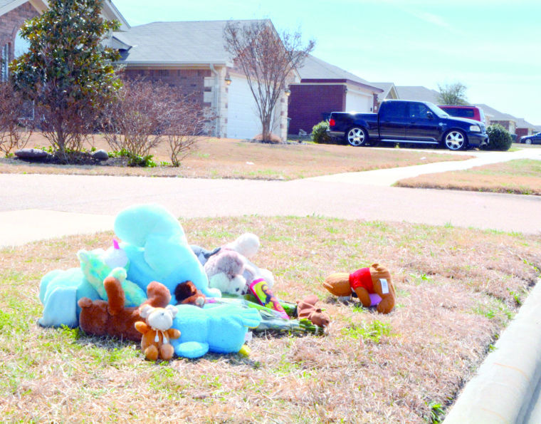 Dog attack memorial