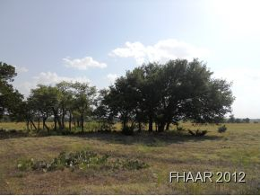 Wonderful property with mixture of trees of several variety, pasture