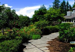 Gardening-Shrinking Lawns
