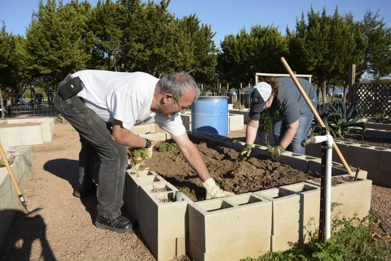 Harker Heights Community Garden offers healthier way to  get your veggies