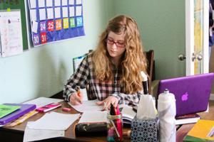 Homeschooling (3)