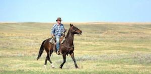 Gulf War veteran enjoys relaxing on morning rides with horse