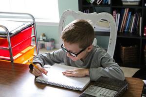 Homeschooling (4)