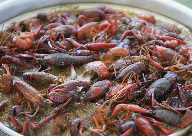 16th annual Rotary Crawfish Boil