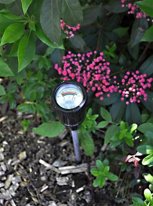 Homes Gardening-Watering