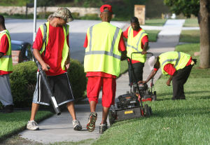 Landscaping Business: Employees with Central Texas Home and Lawn Transitions work on a yard Thursday morning on Stillwood Drive in Killeen. - Photo by Herald/MARIANNE LIJEWSKI