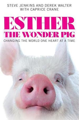 'Wonder Pig' a big delight for animal lovers