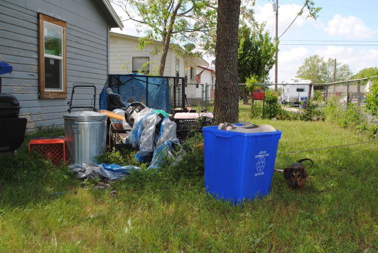 Cove Spring Clean-up