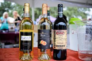 Wine Fest 2014