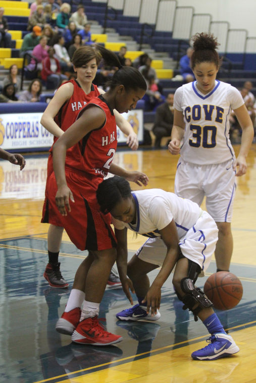 GBB Cove v Heights 16.jpg