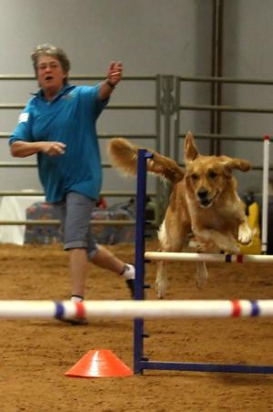 Bell County Kennel Club Agility Trials