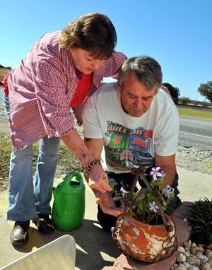 Nolanville gardener