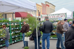 Shoppers come out for Bloomin' Fest