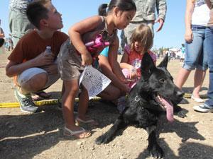 Pets play at Puppypalooza